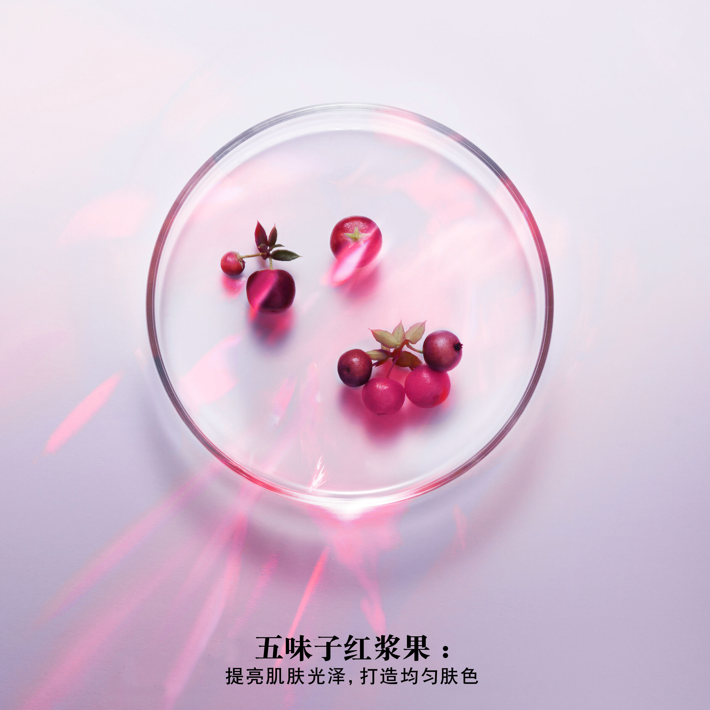 Renergie Yeux Multi-Glow(光彩唤醒和强化眼霜)